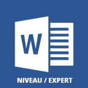 Formation Word bureautique niveau expert