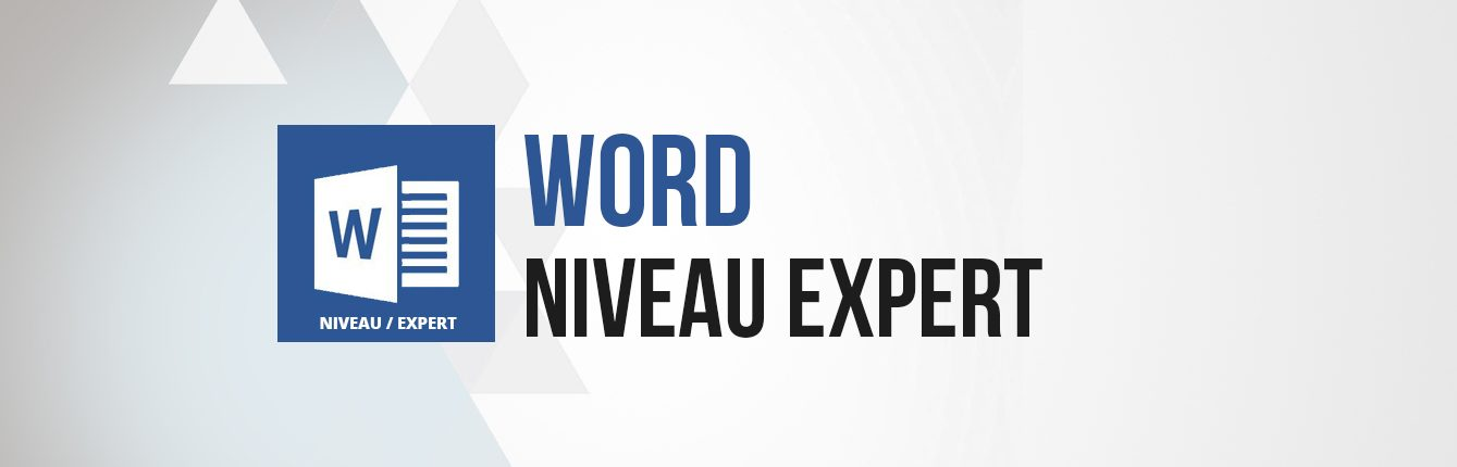 Formation word niveau expert